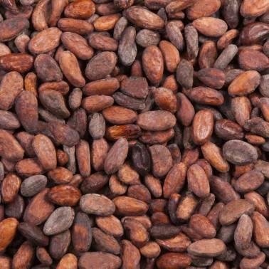Feves de cacao Madagascar