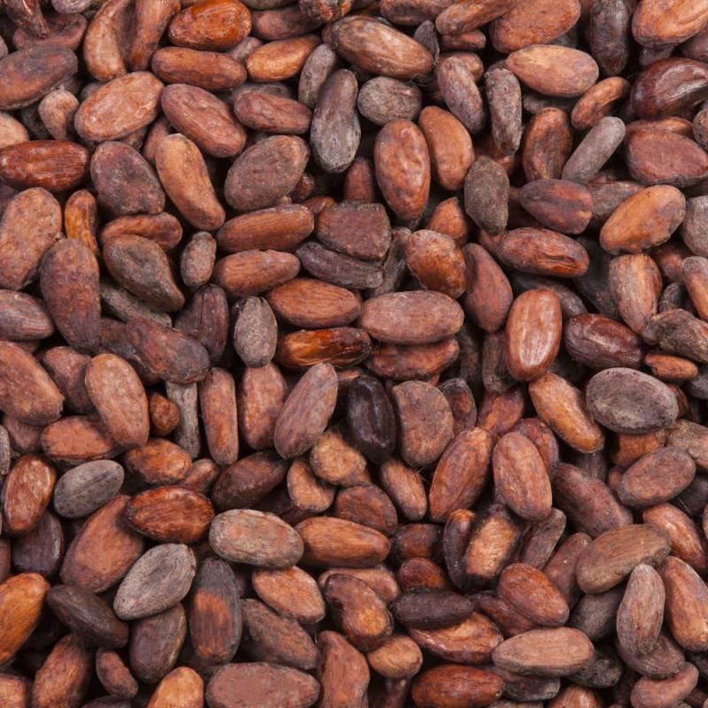 Fèves de Cacao du Vietnam - Cacao cru